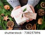 woman holding christmas... | Shutterstock . vector #738257896