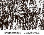 grunge marble texture. white...   Shutterstock .eps vector #738269968