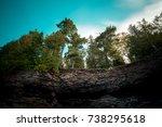black rocks vibrant cliff pine... | Shutterstock . vector #738295618
