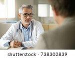 doctor talking to patient in... | Shutterstock . vector #738302839