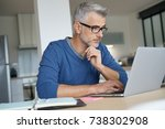 middle aged man working from...   Shutterstock . vector #738302908