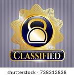 golden emblem or badge with... | Shutterstock .eps vector #738312838
