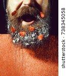 handsome bearded man or guy