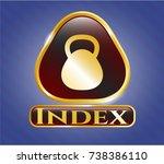 shiny badge with kettlebell... | Shutterstock .eps vector #738386110