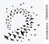 silhouette of a flock of birds. ... | Shutterstock .eps vector #738405019