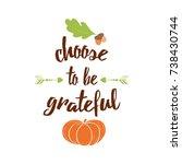 inspirational thanksgiving day... | Shutterstock .eps vector #738430744