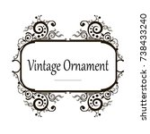 vector decorative frame.... | Shutterstock .eps vector #738433240