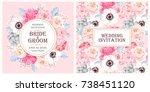vintage wedding invitation | Shutterstock .eps vector #738451120