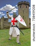 Small photo of Templar knight in battle