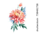 watercolor flower  ...   Shutterstock . vector #738481738