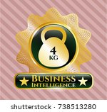 shiny badge with 4kg... | Shutterstock .eps vector #738513280
