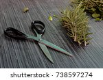 scissors and flat lay with... | Shutterstock . vector #738597274
