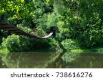bridge in the green tropics | Shutterstock . vector #738616276