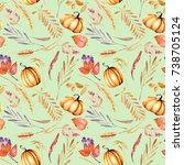seamless autumn pattern with... | Shutterstock . vector #738705124