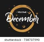 welcome december   grunge  ... | Shutterstock .eps vector #738737590