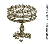 strawberry cake with fresh... | Shutterstock .eps vector #738766600