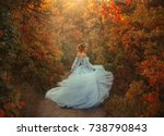 a young princess turns in a... | Shutterstock . vector #738790843