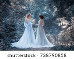 two beautiful princess girls... | Shutterstock . vector #738790858