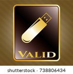 gold emblem with flash drive... | Shutterstock .eps vector #738806434