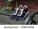 pair of glamorous women's shoes.... | Shutterstock . vector #738814006