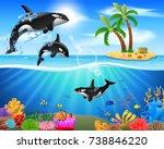 cartoon killer whale jumping in ... | Shutterstock . vector #738846220