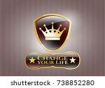 gold badge with queen crown... | Shutterstock .eps vector #738852280