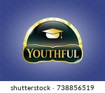 gold badge with graduation cap ... | Shutterstock .eps vector #738856519