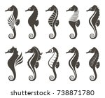 collection of seahorse on... | Shutterstock .eps vector #738871780