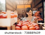 food quality control. checking... | Shutterstock . vector #738889639