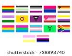 illustrations set of the lgbt... | Shutterstock . vector #738893740