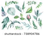 set of green leaves for your... | Shutterstock . vector #738904786