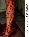 horror scene of a young woman... | Shutterstock . vector #738914203