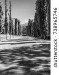 long path. long tree pathway.... | Shutterstock . vector #738965746