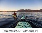 sea kayaking in the ocean... | Shutterstock . vector #739003144