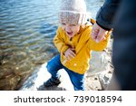 father and son walking on the... | Shutterstock . vector #739018594