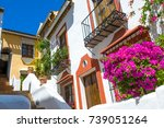 benahavis  andalusia  spain | Shutterstock . vector #739051264