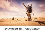 desert walk | Shutterstock . vector #739063504
