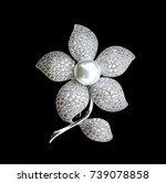 Brooch Beautiful Luxury Jewelr...
