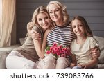 beautiful women generation ... | Shutterstock . vector #739083766
