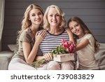 beautiful women generation ...   Shutterstock . vector #739083829