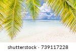 beautiful summer background... | Shutterstock . vector #739117228