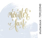 winter fun hand lettering... | Shutterstock .eps vector #739123540