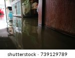 home flooding | Shutterstock . vector #739129789