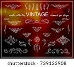 vector ethnic calligraphic... | Shutterstock .eps vector #739133908