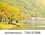 autumn foliage season with lake ... | Shutterstock . vector #739137088