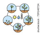 plant growth stages... | Shutterstock .eps vector #739140724