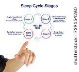 woman presenting sleep cycle...   Shutterstock . vector #739154260