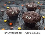 Chocolate Spider Cupcakes For ...