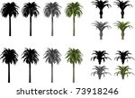 vector set of canary date palms | Shutterstock .eps vector #73918246
