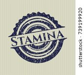 blue stamina distressed rubber... | Shutterstock .eps vector #739199920